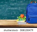 school. | Shutterstock . vector #308130479