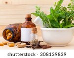 alternative health care fresh... | Shutterstock . vector #308139839