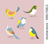 birds | Shutterstock .eps vector #308170811