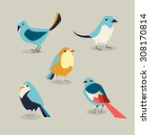 birds | Shutterstock .eps vector #308170814