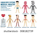 human body systems  annual... | Shutterstock .eps vector #308182739