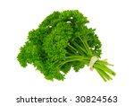 parsley | Shutterstock . vector #30824563