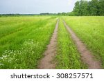 country road and green field | Shutterstock . vector #308257571