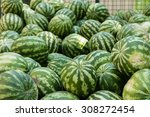Many Ripe Watermelons On The...