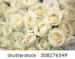 White Roses Floral. Background...