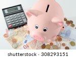 piggy bank  money and calculator   Shutterstock . vector #308293151