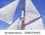 mast and white sails of sailing ... | Shutterstock . vector #308429465