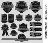 vintage labels set. place your... | Shutterstock .eps vector #308502614