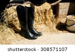 Riding Boot In The Stable  Hay...