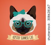hipster siamese cat with... | Shutterstock . vector #308628167