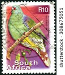 Small photo of SOUTH AFRICA - CIRCA 2000: Postage stamp printed in South Africa, shows African green pigeon (Treron calvus), circa 2000