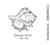vector hand drawn sea shell. | Shutterstock .eps vector #308680211
