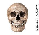 human skull on isolated white... | Shutterstock . vector #308689751