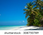 beautiful beach and tropical sea | Shutterstock . vector #308750789
