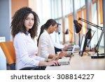 successful business woman... | Shutterstock . vector #308814227