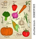 vegetable with watercolor or... | Shutterstock .eps vector #308859305