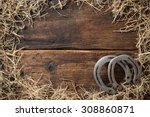 Two Old Rusty Horseshoes...