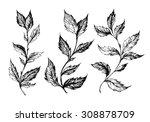 set of hand drawn ink sketch... | Shutterstock .eps vector #308878709