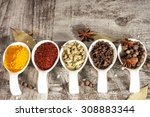 spices. spice in wooden spoon.... | Shutterstock . vector #308883344