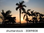 Sunset behind palm trees on an El Salvador beach - stock photo