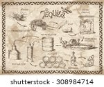 production scheme of tequila on ... | Shutterstock .eps vector #308984714
