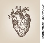 human heart hand sketch style.... | Shutterstock .eps vector #308990069