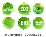 vector natural  organic food ... | Shutterstock .eps vector #309006191