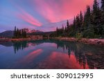 spectacular colors from the... | Shutterstock . vector #309012995