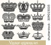 collection of vector hand drawn ... | Shutterstock .eps vector #309015035
