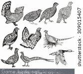 Game Birds Set In Engraved...
