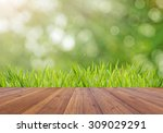 abstract bright spring with... | Shutterstock . vector #309029291