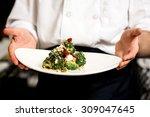chef holding broccoli salad ... | Shutterstock . vector #309047645