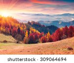 colorful autumn sunrise in the... | Shutterstock . vector #309064694