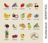 collection fruits icons vector... | Shutterstock .eps vector #309097421