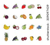 collection fruits icons vector... | Shutterstock .eps vector #309097439