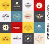 vintage frames  labels. group... | Shutterstock .eps vector #309108041