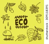 doodle graphic elements of the... | Shutterstock .eps vector #309118391
