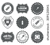 vintage emblems  labels. safe... | Shutterstock .eps vector #309120041