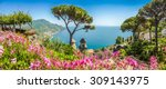 scenic picture postcard view of ... | Shutterstock . vector #309143975