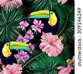 toucan  exotic birds  tropical... | Shutterstock .eps vector #309146249