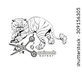 hand drawn persian cat. barber... | Shutterstock .eps vector #309156305