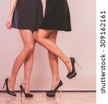 female fashion. closeup black... | Shutterstock . vector #309162161