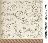 calligraphic curls and... | Shutterstock .eps vector #309212795