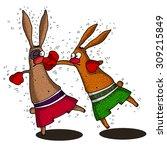 rabbits boxers | Shutterstock .eps vector #309215849
