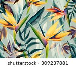 seamless tropical flower  plant ... | Shutterstock . vector #309237881