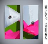set of polygonal geometric... | Shutterstock .eps vector #309340481