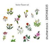 vector set with vintage flowers. | Shutterstock .eps vector #309348335