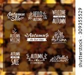 logotypes set. autumn badges ... | Shutterstock .eps vector #309355529