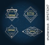 art deco geometric vintage...   Shutterstock .eps vector #309373247