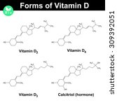 forms of vitamin d  ... | Shutterstock .eps vector #309392051